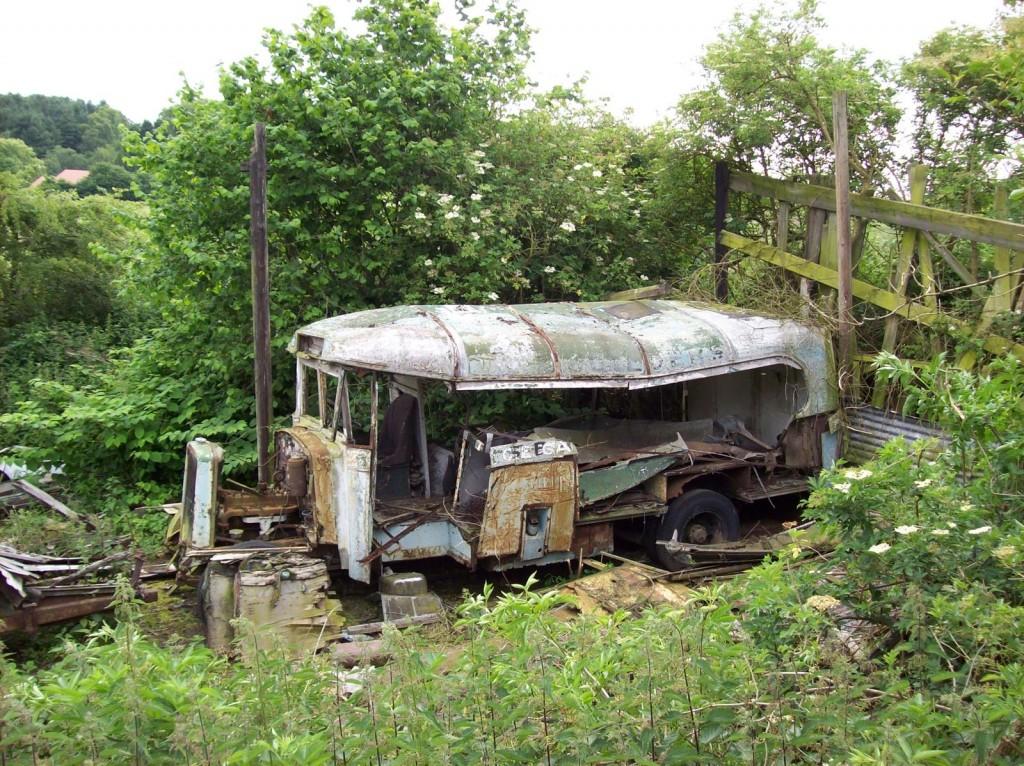 Daresbury Buses 041
