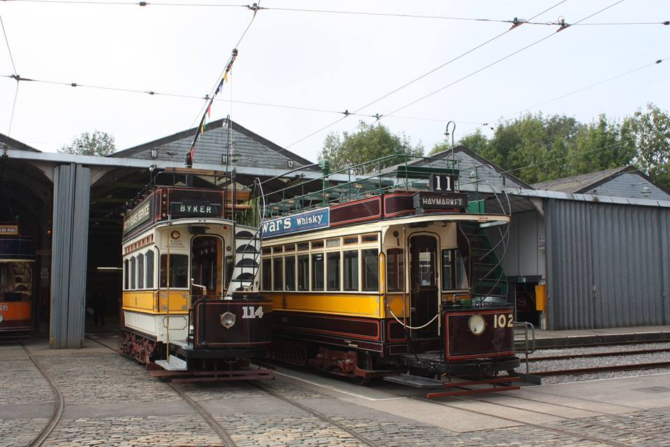 Trams Today Photo of 114 and 102